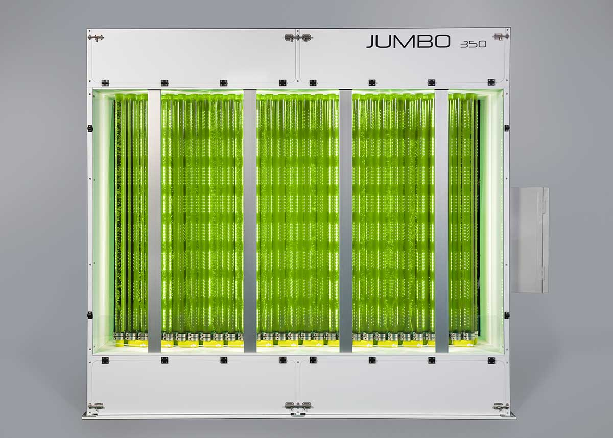 The Industrial photobioreactor of Synoxis Algae for the production of microalgae in large quantity