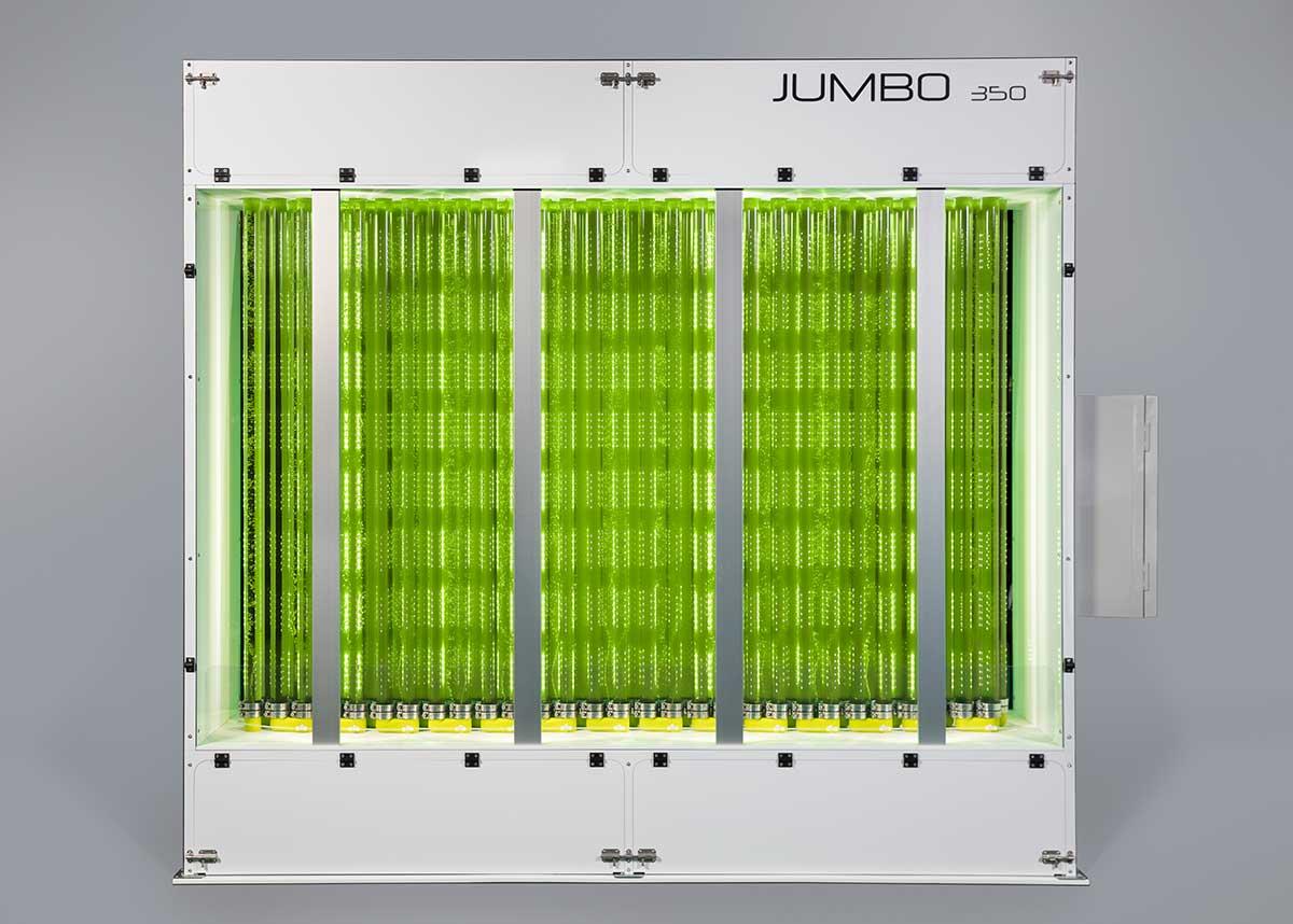 Photobioréacteur industriel de Synoxis Algae pour la production de microalgues en grande quantité