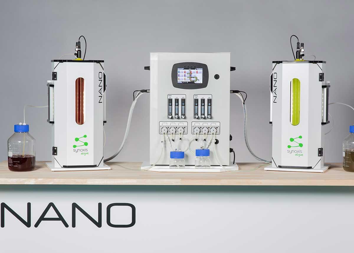 Deux souches de microalgues sur le même contrôleur en photobioréacteur