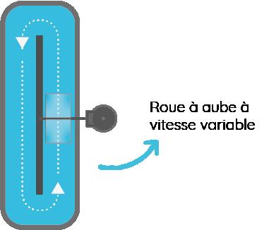 roue à aube à vitesse variable pour culture de microalgue et macroalgue